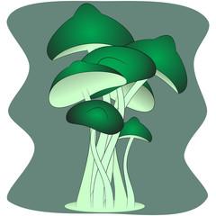 magic green mushrooms vector