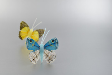 Butterfly decoration stock images. Butterfly on a silver background. Blue and yellow butterfly
