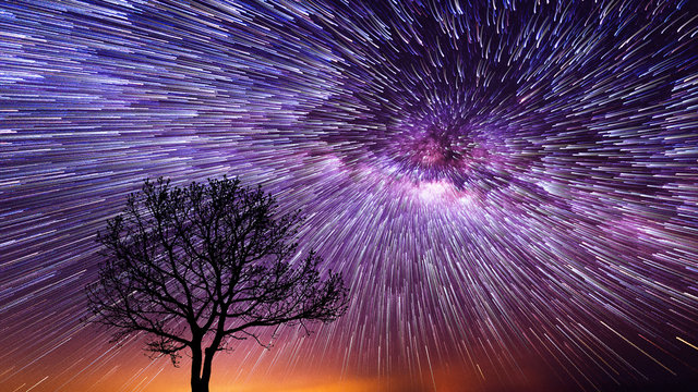 Spiral Star Trails over silhouettes of trees, Night sky with vortex star trails.