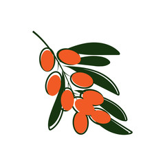 Sea buckthorn icon vector illustration