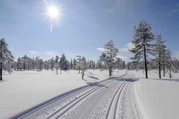 Ski tracks in Norway