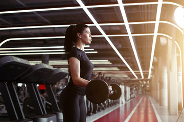young fitness woman exercise with barbells in gym for building muscles