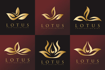 Set of Golden Lotus and Luxury Logo Vector Template