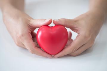 Woman hands holding a heart.