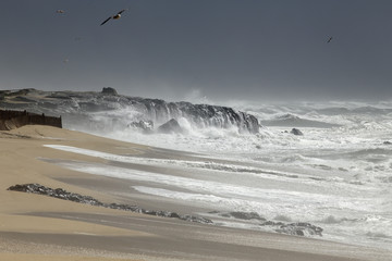 Sea storm in the portuguese coast