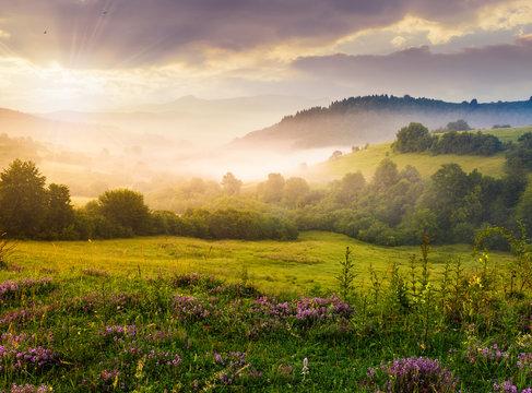 gorgeous sunrise in Carpathian mountains