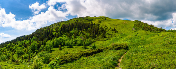 narrow path to the mountain top. beautiful panorama of summer landscape with grassy hills with forested slopes. huge cloud hang over the ridge