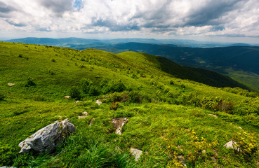 grassy slope of the mountain on a cloudy day. beautiful summer landscape of Carpathian mountains