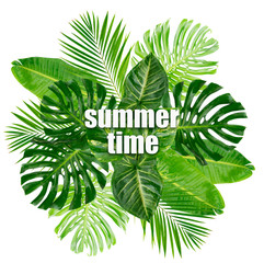 Tropical green leaves with summer time words isolated on white background