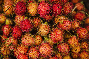 Rambutan fruit Vietnam