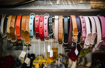Colorful dog collars for sale at a pet shop