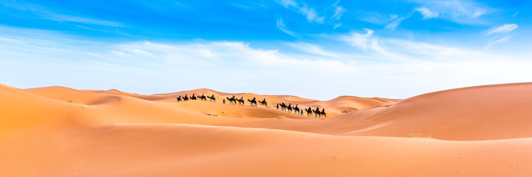 Abstract nature background. Morocco.