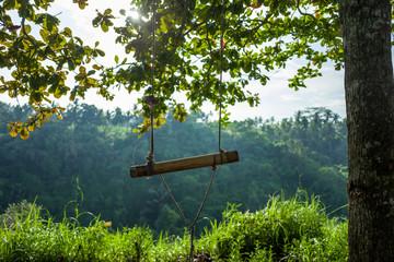 Swing at the Campuhan Ridge Walk in Ubud, Bali