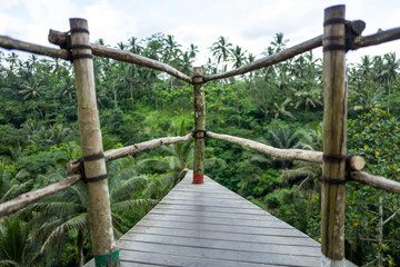 The Bali Swing area in Indonesia