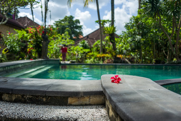 View on a pool in Ubud, Bali