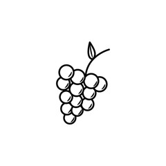 grapes icon. Element of eating for mobile concept and web apps. Thin line  icon for website design and development, app development. Premium icon