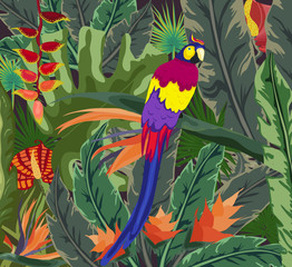 Posters tropical flora and fauna, Tropical, plant, parrot background