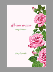 Vector pink roses wedding invitations or greeting card