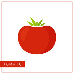 Bright memory training card with color vegetable. Flat design isolated red color tomato with shine and shade. Vector illustration for healthy nutrition poster, vegetables market sign or organic logo