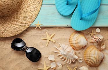summer seashells on sand