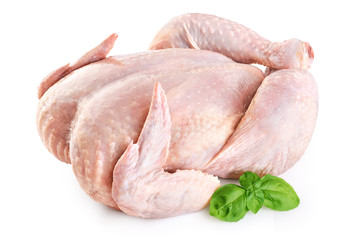 Foto op Canvas Kip Fresh raw chicken and basil isolated on white background.