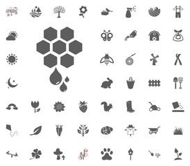 Honey icon. Spring vector illustration icon set.