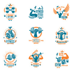 Vector weightlifting theme logotypes and inspirational leaflets collection made using dumbbells, barbells, disc weights sport equipment and strong man perfect body.