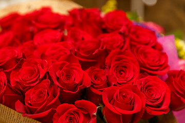 Bouquet of many red roses