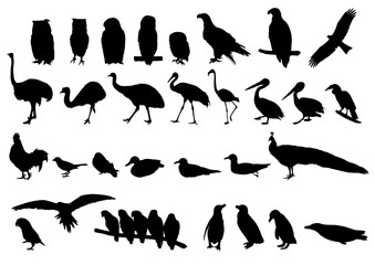 動物シルエット素材 - animal silhouettes
