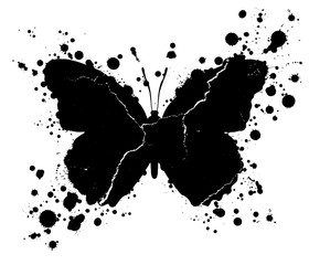 Ingelijste posters Vlinders in Grunge Grunge butterfly shape and paint blobs splattered