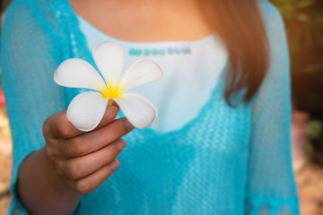 Please forgive me.Woman hand holding white plumeria flower proposed to you, front view.