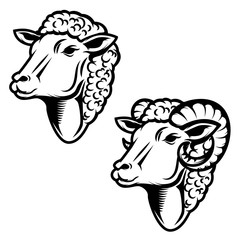 Set of sheep head illustration. Ram head. Design element for logo ,label, emblem, sign.