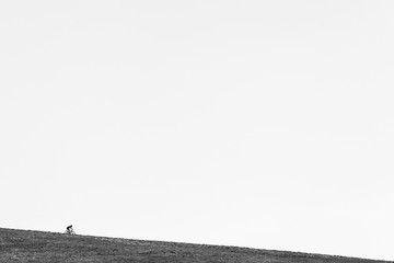 Downhill biker