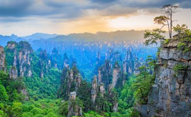 Quartzite sandstone pillars and peaks with green trees and mountains sunset panorama, Zhangjiajie national forest park, Hunan province, China Fototapete