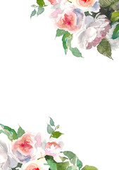 Garden roses flower. Watercolor floral illustration. Floral decorative element. Floral background. Place for text