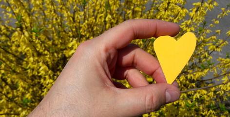 cuore e amore in giallo - gelosia