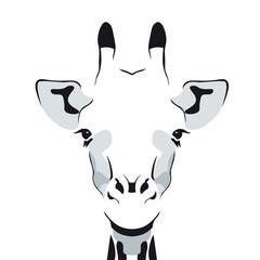 Zeichnung eines Giraffen-Kopfes, einfach, Silhouette