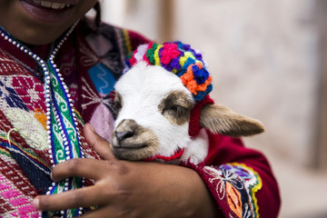 Cute little girl from Cusco, Peru