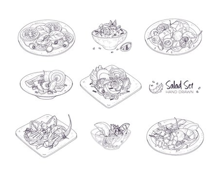Set of different salads served on plates and in bowls hand drawn with contour lines on white background - Tabbouleh, Nicoise, Caesar, Waldorf, fruit. Monochrome realistic vector illustration.