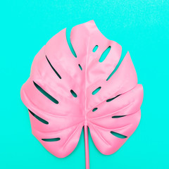 pink tropical and palm leaf in vibrant bold color on turquoise background . Concept art. Minimal surrealism