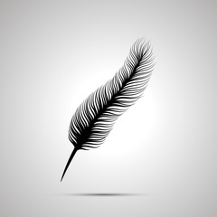 Long feather silhouette, simple black icon