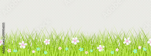 grass border no background animated spring grass flower seamless border easter greeting card decoration element flat vector illustration