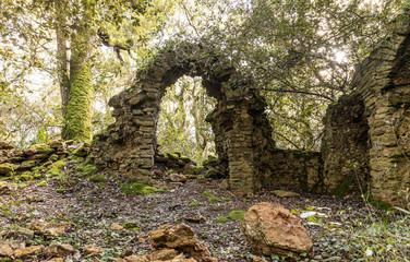 Ruines d'une ancienne chapelle dans les bois du Veillon à Talmont Saint-Hilaire (Vendée, France)