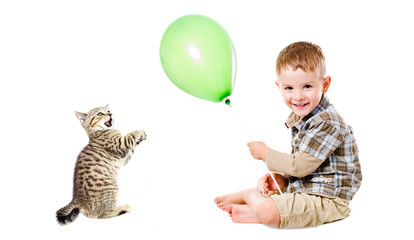 Cheerful boy, playing with funny little kitten, sitting isolated on white background