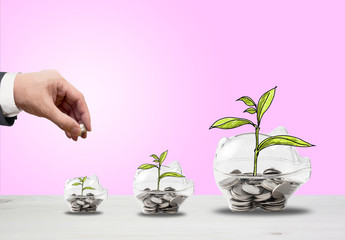 Top view Investment is like planting trees. Take care it will provide a good growth on color background.Transparent piggy bank filled with coin
