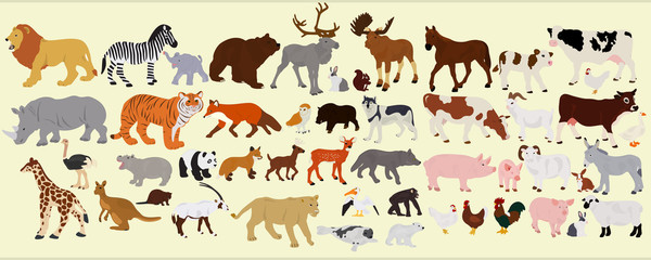 A collection of different farm animals, African and Australian on a light background