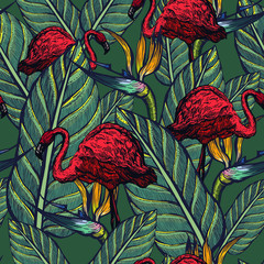 Seamless pattern of pink flamingos and flowers. Strelitzia and tropical birds. Summer. exotic nature.