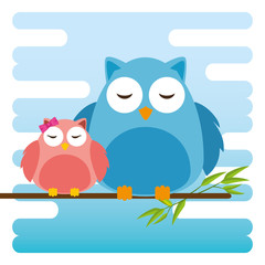 cute owls father and son characters vector illustration design