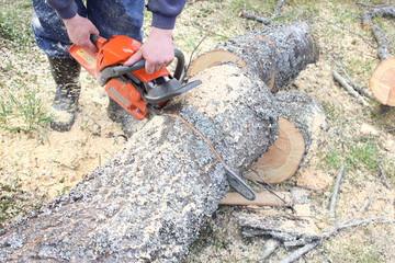 Man cutting a piece of wood by using saw machine