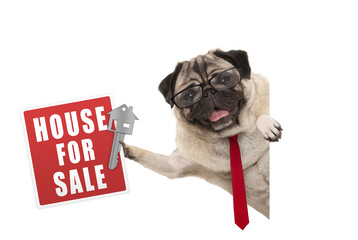 happy business pug dog witg glasses and tie, holding up red house for sale sign and key, isolated on white background
